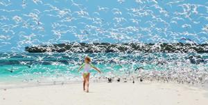 Место идеального отдыха - остров Занзибар